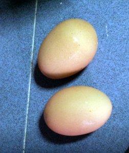 2 eggs make nice fried rice!