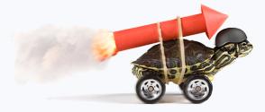 tortoise on rollerblades and jet